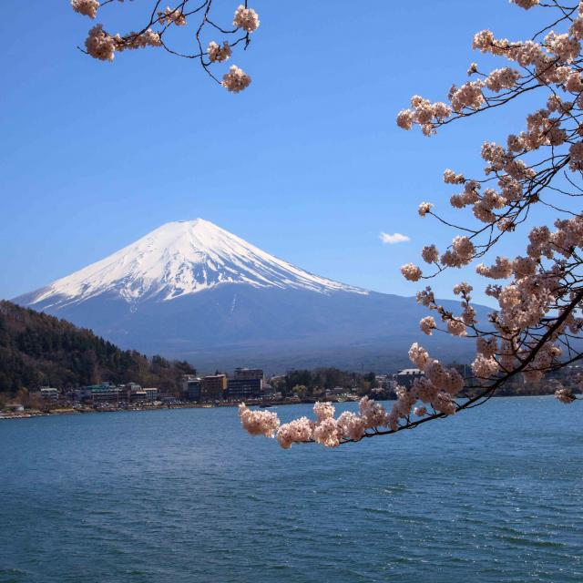 Day Trip from Tokyo to Mount Fuji
